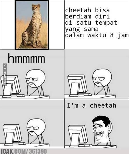 Im a cheetah