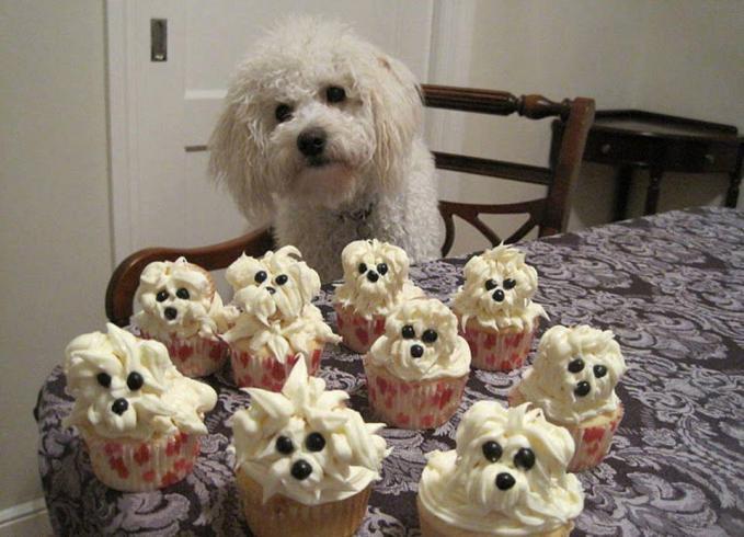 Cupcake anjing. Mirip sekali dengan anjing aslinya . imut ya anjingnya. Wownya jangan lupa ya