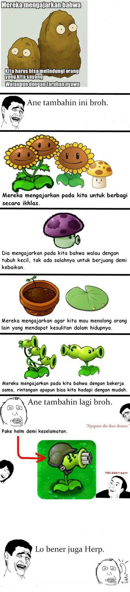 Secret Of Plant Vs Zombie