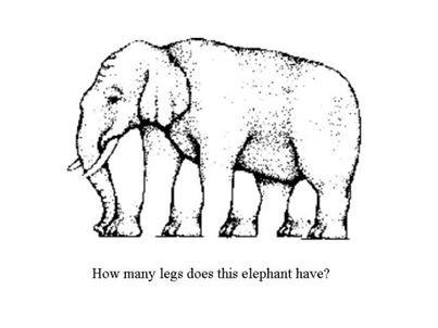 Hayo ada berapa banyak kaki gajah ini