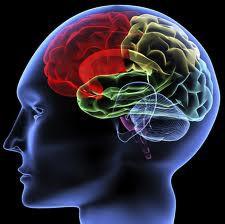 Kebiasaan Sepele yang Bisa Merusakan Otak