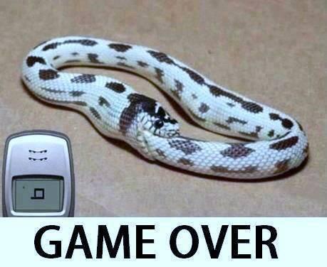 Inilah kejadian nyata penyebab game over pada game snake di HP jadul... ahahahahaa :D