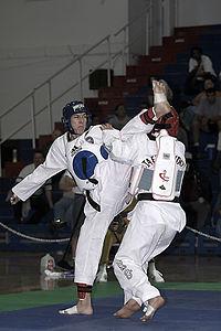 Taekwondo (juga dieja Tae Kwon Do, Taekwon-Do) adalah olahraga bela diri asal Korea yang juga populer di Indonesia, olah raga ini juga merupakan olahraga nasional Korea. Ini adalah seni bela diri yang paling banyak dimainkan di dunia.....