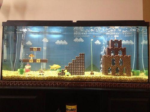 aquariumnya terinspirasi dari game mario bros wah keren ya