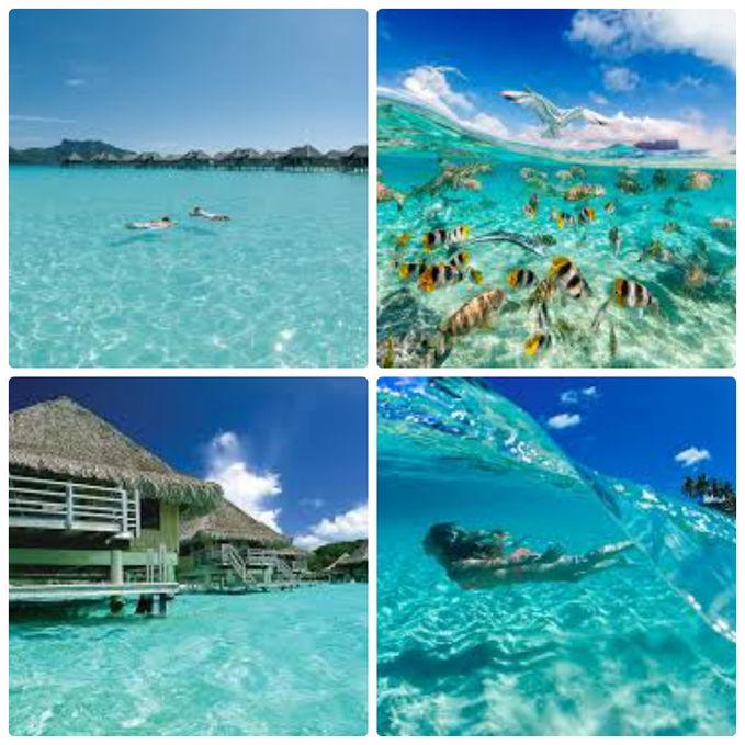 Bora Bora, French Polynesia. Ciaa... airnyaaa... OMG.. Bening banget..!! Kalau ada pantai di Indonesia yang kayak gitu,bisa terjadi nggak,sob? Moga aja bisa,ya. Walau impossibru :D WOW-nya mana,yaa?? ^_______^