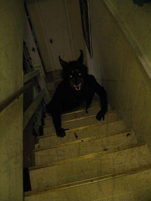 hati hati ada werewolf