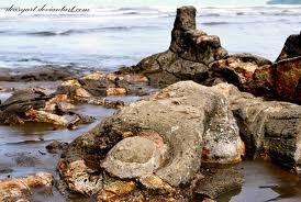 Foto Batu Malin Kundang Jadikan ini contoh agar kita tidak menjadi anak yang durhaka kepada kedua orangtua Jangan Lupa WOW Nya!