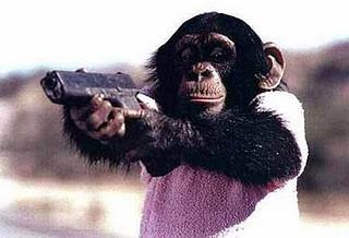 """Sebuah laporan dalam China Daily mengindikasikan bahwa Taliban TENGAH menciptakan tentara mujahidin monyet. Cerita yang muncul pada bulan Juli 2010 di China Daily menyarankan bahwa pemberontak menggunakan sistem penghargaan-dan-hukuman untuk melatih kera dan babon untuk menargetkan tentara yang mengenakan seragam militer AS. Taliban diduga """"monyet diajarkan bagaimana menggunakan Kalashnikov, senapan mesin Bren ringan dan mortir parit."""" Tetapi seorang peneliti yang telah menghabiskan karirnya mempelajari kehidupan sosial primata non-manusia sangat mengkritisi pada cerita ini. Cerita Cina dikutip wartawan Inggris yang tidak disebutkan namanya dan sumber-sumber militer AS ketika mendiskusikan gagasan monyet pemberontak. Sebaliknya, Bintang AS dan sumber berita Stripes mewawancarai seorang juru bicara NATO yang mengatakan gagasan tidak memiliki dasar dalam realitas"""