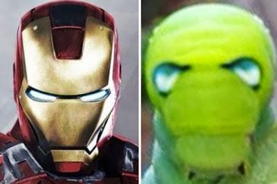 Wajah ulat Ini Mirip Iron Man