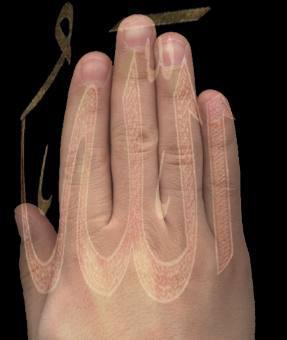 [Keajaiban Allah] kebesaran Allah terdapat di Tangan kanan manusia,, Subhanallah....