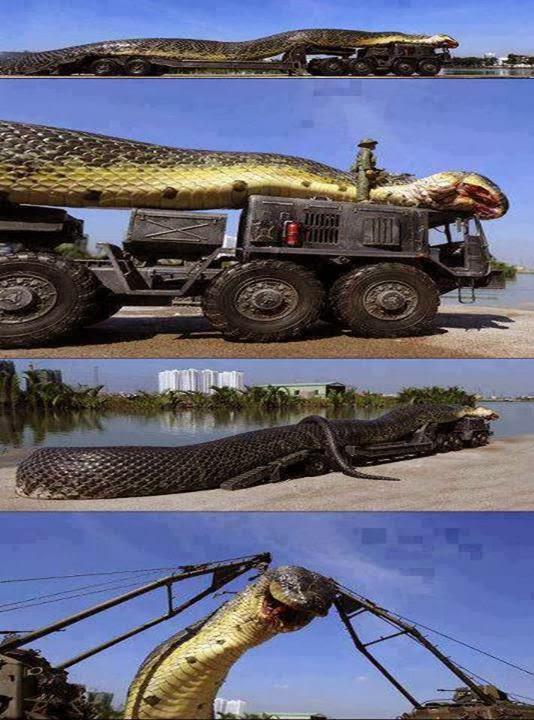 Wow, ular terbesar ditemukan !! Lihat foto lengkapnya >> http://gallianmachi.blogspot.com/2013/11/ular-terbesar-yang-pernah-ditemukan.html
