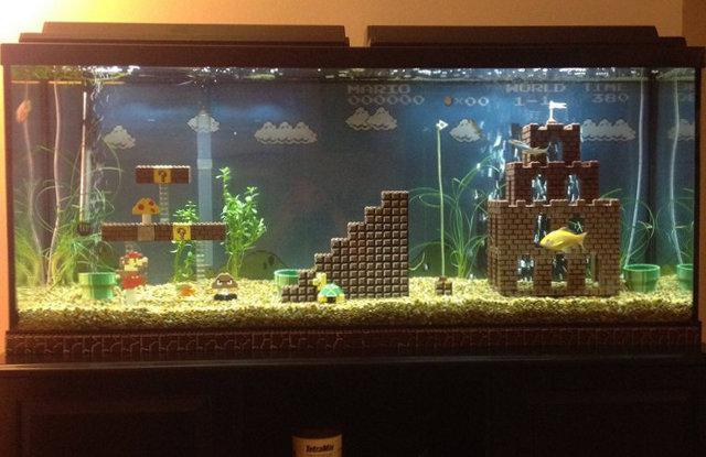 skarang super mario pindah hati ke aquarium nih,, haha,,