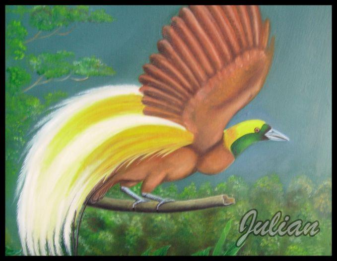 Lukisan Burung Surga Burung Cenderawasih Wow Nya Yah