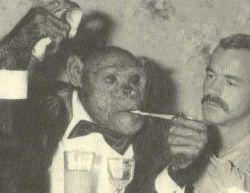Humanzee adalah simpanse hipotetis dan hibrida manusia. Penelitian yang dilakukan oleh J. Michael Bedford menunjukkan bahwa sperma manusia bisa menembus membran pelindung terluar telur siamang. Sepanjang sejarah ada banyak laporan dan rumor ber
