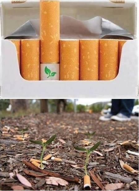 Wow.. Filter rokok Biodegradable dengan biji bunga. Apakah ini masuk akal? Atau itu selamatkan bumi, Kill your self :)