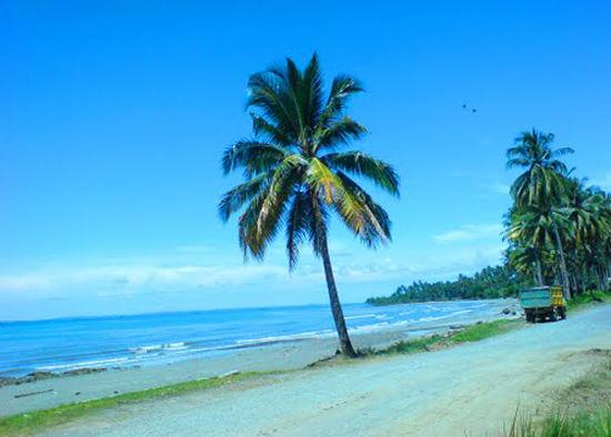 Bilang wow Pantai angsana Kalimantan selatan
