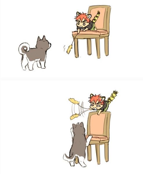 LOL XD BAKAgami! anime: kuroko no basuke please like Anime All Genres on facebook ^_^)//