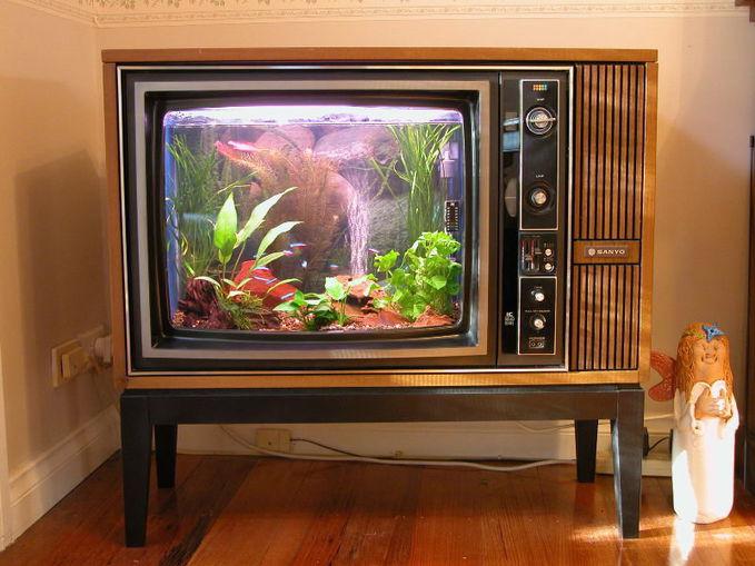 Unikk, Bekas TV bisa dijadikan aquarium. kreasi unik ini bisa memotivasi kalian, agar bisa tau cara kalau tv yang tidak dipakai bisa dibuat karya seni yang keren seperti gambar di atas...