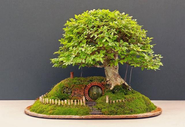 Wooww.. bonsai ini berbentuk seperti rumah hobbit (the lord of the rings)... unik bgt!