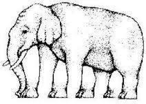 Perhatikan dengan seksama, Ada berapa kaki gajah di bawah ini ??