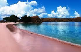 salah satu keaajaiban dunia.....pantai pink terletak di lombok timur NTB INDONESIA pantai yang indah, pantai ini dapat mengguncangkan gosip orang orang wisatawan di seluruh dunia...APALAGI ANAK NURUL HAKIM...WIIHHHHH HEBOHHH...