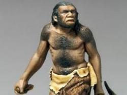 Misteri `Manusia Hutan' di TNWK Lampung Timur