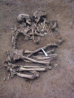 2 kerangka merangkul (6000 th), ini ditemukan 25 km sbelah selatan dr Verona, dimana legenda Romeo&Juliet; berada