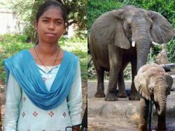 Nirmala, Seorang Gadis yang Bisa Berbicara dengan Gajah