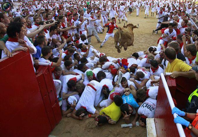 Sobat Pulsk, keren ya aksi meloncat si Banteng di dalam arena pertunjukan matador ini. Nampak jelas ketakutan para penontonnya ya sobat Pulsk.