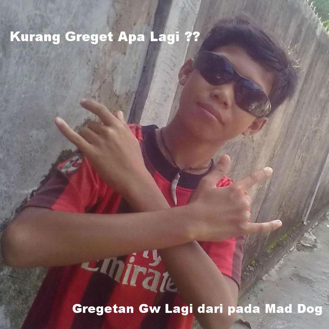 Greget Amat nih anak nantang sih Mad Dog :v