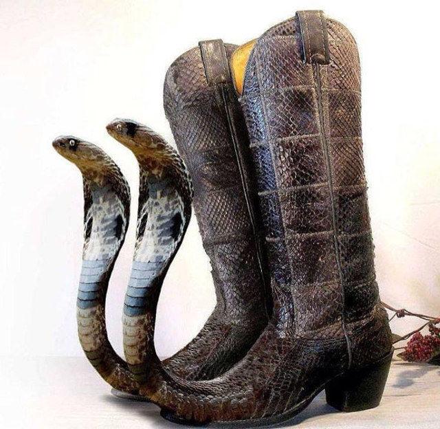 Karena sepatu kulit biasa terlalu mainstream. Sepatu boot Cobra