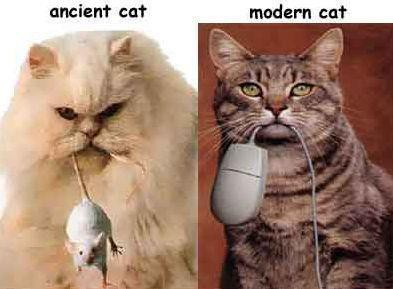 Ancient cat vs Modern cat :D