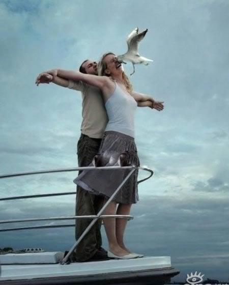 Bermaksud ingin meniru adegan dalam Film Titanic eeh malah Ketabrak Burung Laut.wow ya