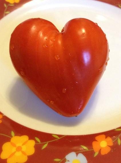 Tomat Berbentuk Hati