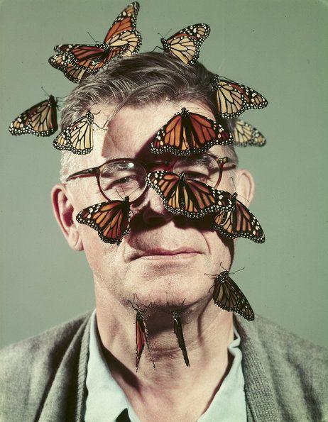 wanginya wajah pria ini membuat kupu2 nempel di wajahnya