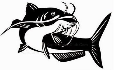 9 Tips Jitu Mancing Ikan Lele