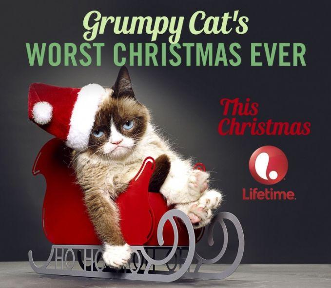 """Grumpy Cat""""s Worst Christmas Ever (2014) - TV Movie, Komedi Sinopsis: Seorang gadis 12 tahun mendapatkan kucing unik yang bisa berbicara Selengkapnya http://movie.co.id/grumpy-cats-worst-christmas-ever/"""