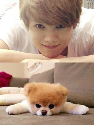 Luhan cute moment..