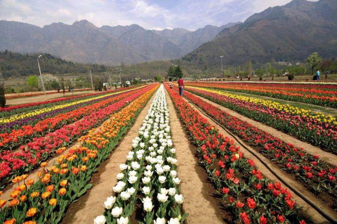 taman bunga, fantastik