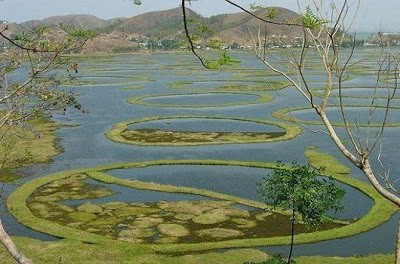 Danau-danau terunik dan langka didunia . Sumber : http://anak-melayu20.blogspot.com/2013/02/danau-terlangka-di-dunia.html