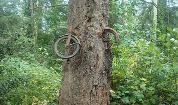 Pada Tahun 1914 Seorang Anak Laki2 Meninggalkan Sepedanya Saat Akan Perang Sepeda ini memang benar2 ditinggalkan pemiliknya tapi pada tahun 1950, orang itu bernama Don Puz dan dia pergi bukan untuk perang
