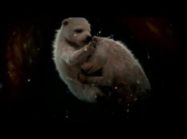 10. Beruang Kutub Ini adalah 2 anaknya yang menggemaskan dimana akan tetap berada di rahim selama 8 bulan. Selama periode kehamilan ini ibu dapat melipatgandakan berat tubuhnya mengenakan 200kg dalam waktu 4 bulan. Anak beruang ini hanya lahir deng