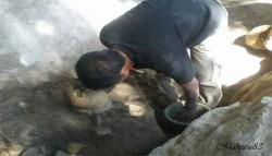 Penemuan Manusia Purba Tertua Di Sulawesi