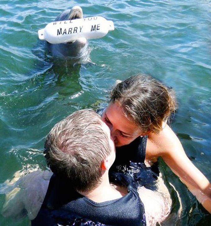 Pria ini tahu jika pacarnya tidak akan menolaknya jika melihat lumba-lumba yang cantik ini.