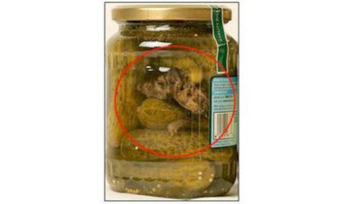 6. Acar yang Berisi Tikus Pada tahun 2005Jeanette Reinders menemukan tikus mati pada toples acar yang dia beli. Beruntung dia menemukannya sebelum toples di buka.