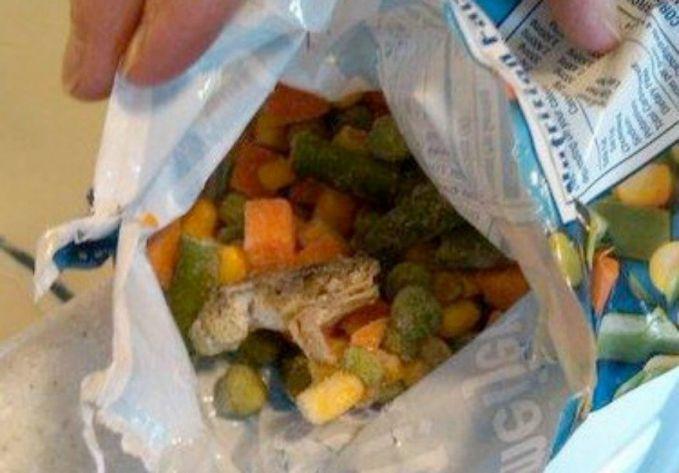 9. Kodok Beku Tim Hoffman menemukan katak kecil beku dalam plastikcampuran sayuran beku yang Ia beli.