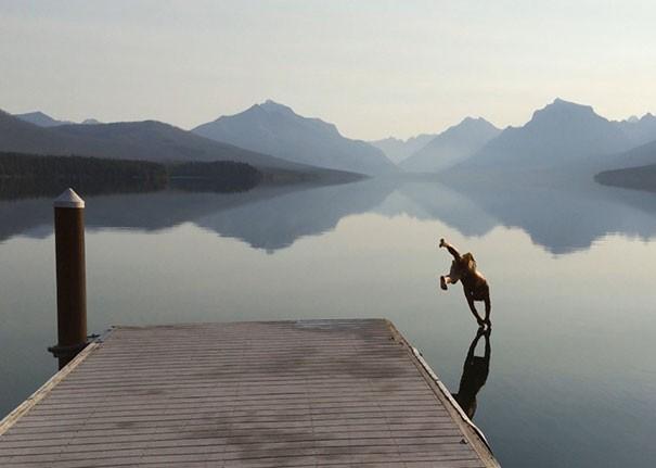 ini orang akrobat di atas air..keren banget