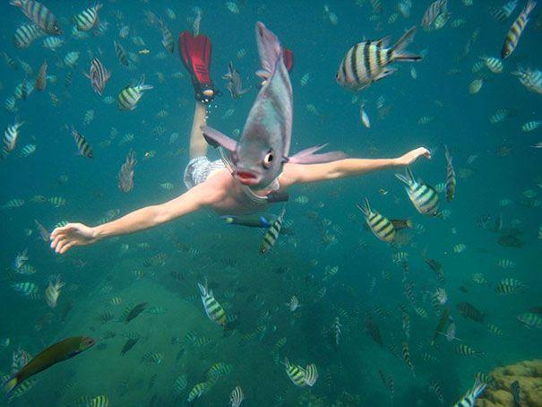 Heboh ditemukan manusia berkepala ikan sedang berenang
