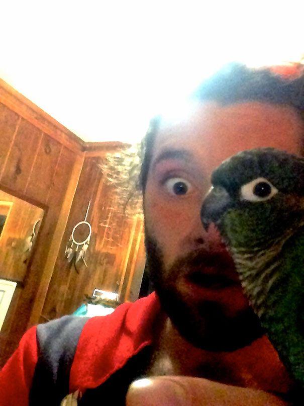 manusia setengah mata burung