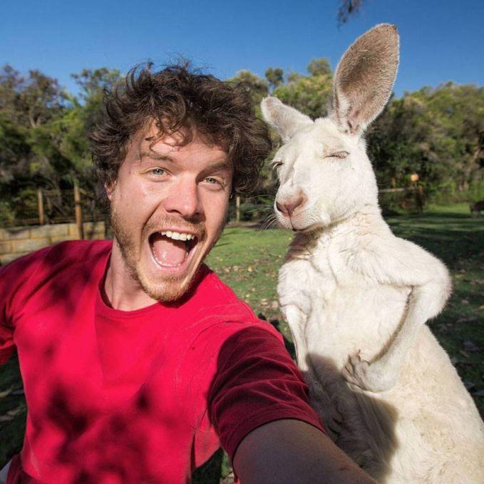 (18 Foto) Pria ini AHLI SELFIE dengan Binatang